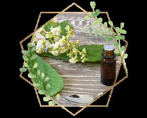 Bach Flower Remedies Ibiza